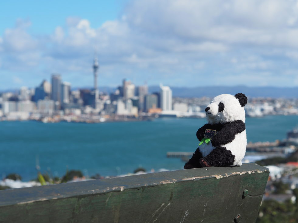 ニュージーランドデヴォンポートのマウントヴィクトリアからの景色